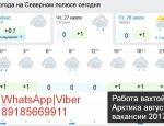 WhatsApp|Viber вакансии Арктика 89185669911