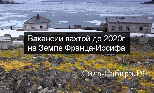 на Земле Франца-Иосифа вакансии до 2023 на Сила-Сибири.РФ