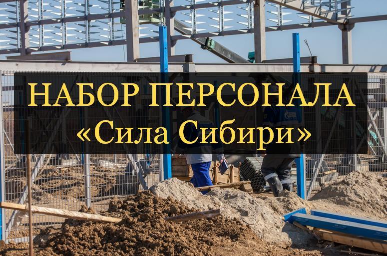 Прием рабочих на вахту в Сила Сибири