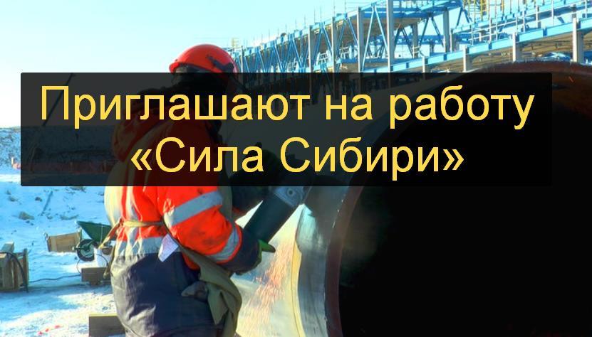 «Сила Сибири» требуется и приглашает заработать
