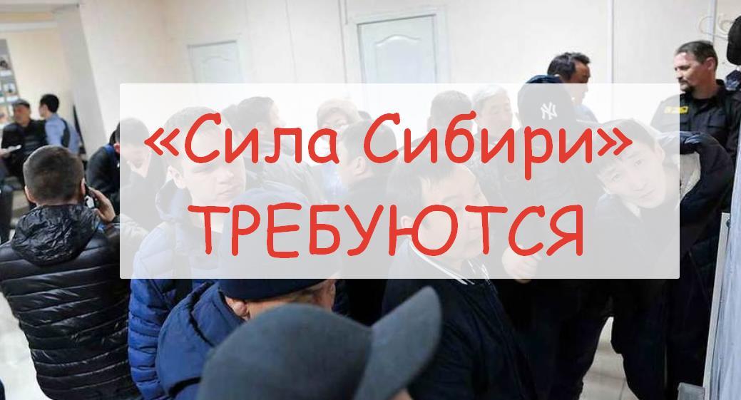 «Сила Сибири» востребованы